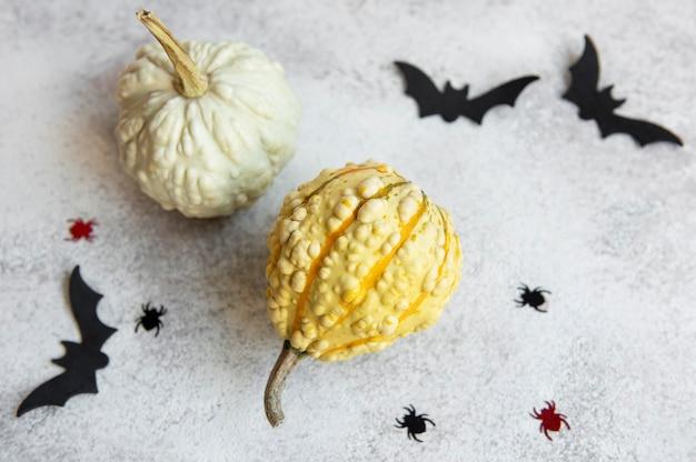 Vista dall'alto di artigianato di halloween, zucche, pipistrelli e ragni su sfondo di cemento. concetto di halloween.