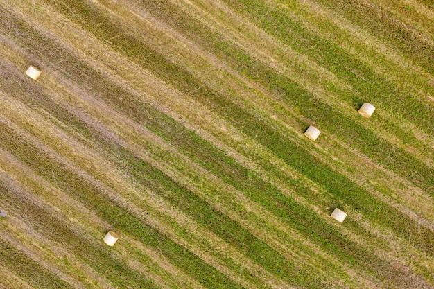 Vista dall'alto di balle di fieno, campo agricolo dopo il raccolto con rotoli di fieno