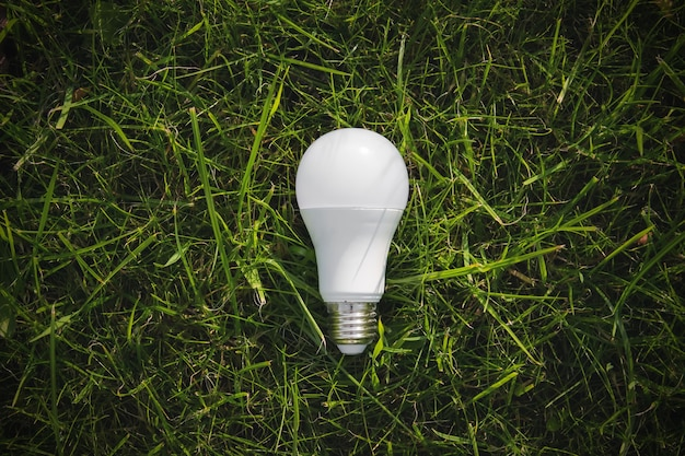 Vista dall'alto della lampada sull'erba verde, concetto di efficienza energetica.
