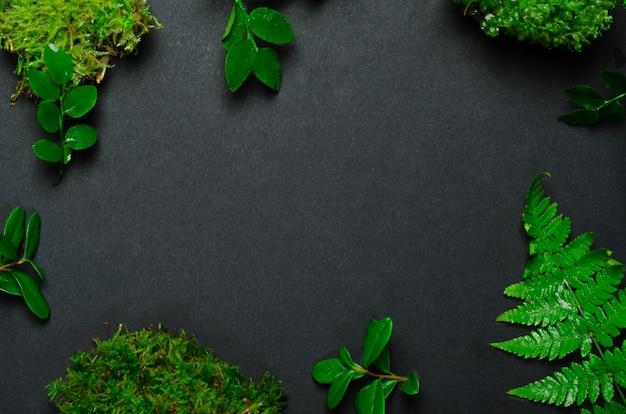 Vista dall'alto di foglie e vegetazione con copia spazio
