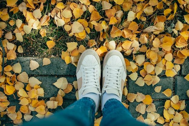 Vista dall'alto delle gambe con gli stivali sulle foglie d'autunno. autunno.