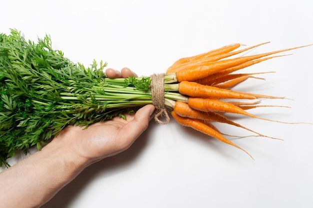 Vista dall'alto della mano maschile che tiene il mazzo di carote fresche su sfondo bianco.