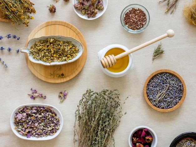 Vista dall'alto di spezie ed erbe medicinali