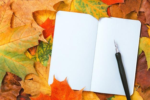 Vista dall'alto di un quaderno con foglie autunnali e penna a inchiostro. foglie di acero colorate e pagine bianche del diario. mockup autunnale, copia spazio, concetto di educazione