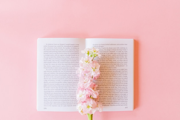 Vista dall'alto del libro aperto e rosa matthiola incana o mathilda lavanda su sfondo rosa pastello con spazio di copia