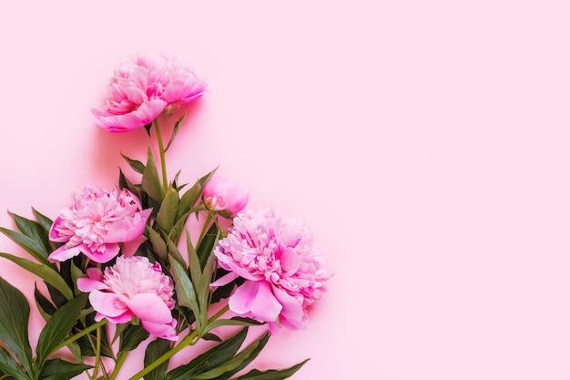 Vista dall'alto di fiori di peonia rosa con spazio di copia. spazio per il testo.