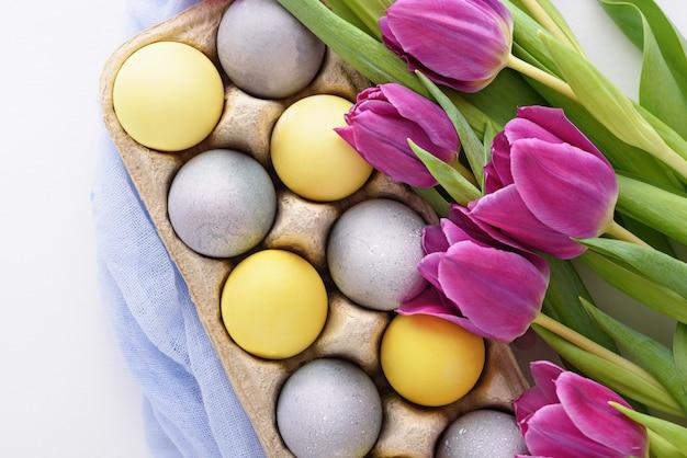 Tulipani viola di vista superiore e uova di pasqua gialle e blu pastello su fondo bianco