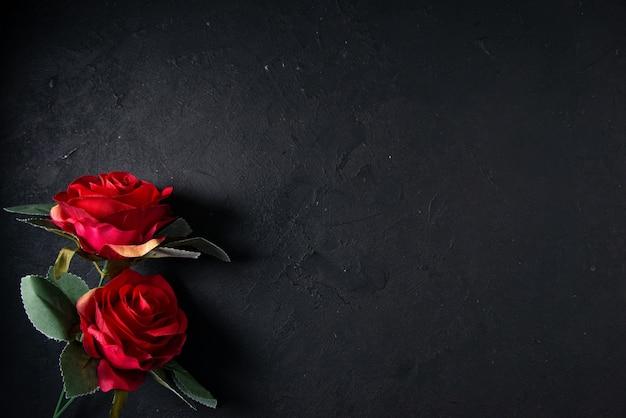 Vista dall'alto di fiori rossi su oscurità