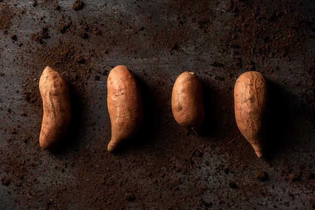 Vista dall'alto di patate dolci nella sporcizia
