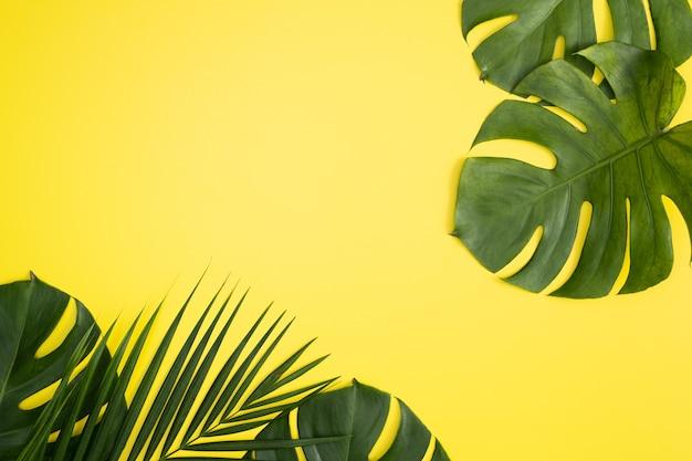 Vista dall'alto del ramo di foglie di palma tropicale isolato su sfondo giallo brillante con spazio di copia.