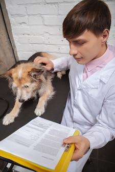 Vista dall'alto colpo verticale di un veterinario maschio che accarezza il cane spaventato e legge i documenti medici nei suoi appunti
