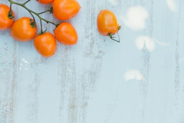 Vista dall'alto di pomodori gialli su una luce blu