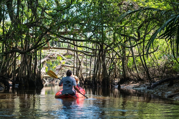 Turista in canoa visita little amazon o sang nae canal per vedere la foresta nascosta di banyan tree, uccelli, serpenti, varanus salvator lungo il fiume a phang nga, thailandia. famoso viaggio nella natura.