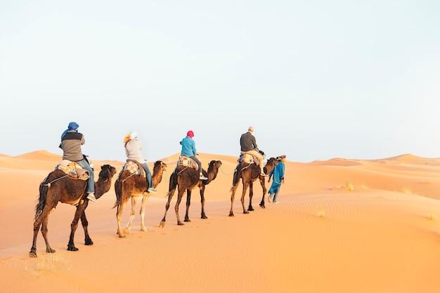 I turisti guidano su un dromedario nel deserto del sahara.