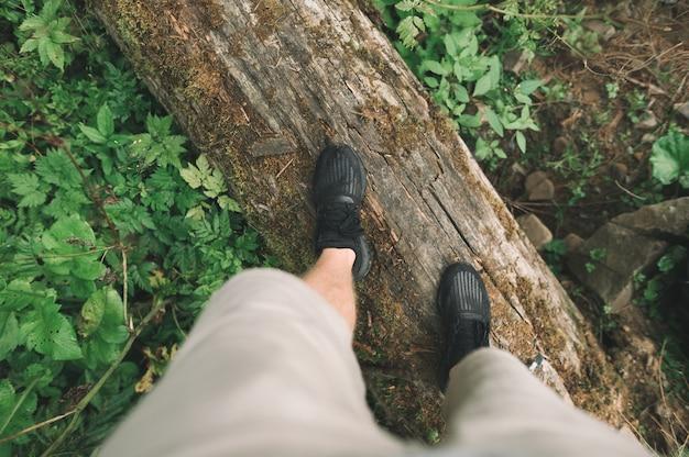 Le gambe del turista in scarpe da ginnastica si trovano su un tronco nella foresta