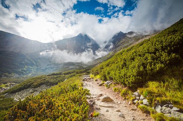 Sentiero turistico in montagna con cielo azzurro e verdi colline