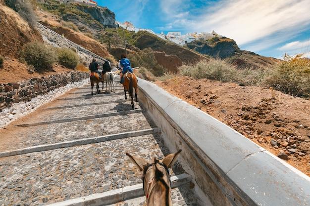 I turisti sugli asini salgono le scale dal porto alla città di fira, moderna capitale dell'isola greca dell'egeo, santorini, grecia