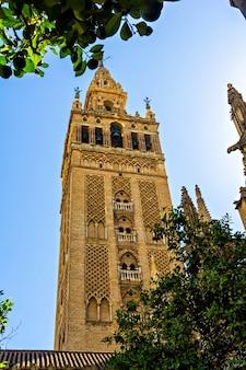 Torre giralda, cattedrale di siviglia, andalusia, spagna