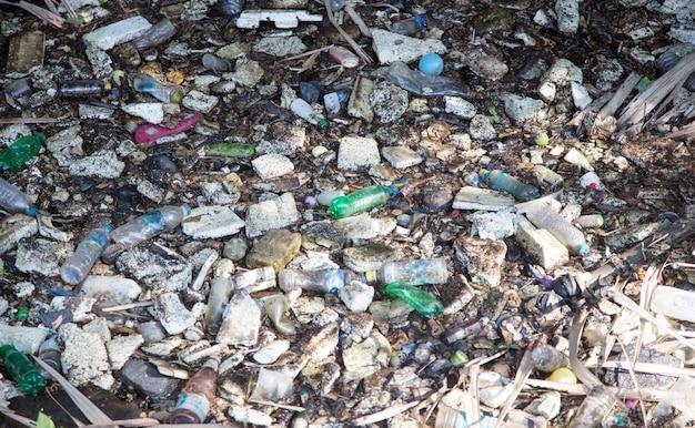 Tossico in acqua e cattiva pianta acquatica fluviale circondata da bottiglie di plastica, schiuma e inquinamento.