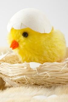 Pollo giocattolo con guscio d'uovo