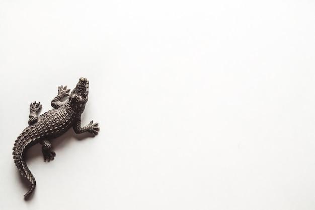 Coccodrillo marrone del giocattolo su fondo bianco per la decorazione