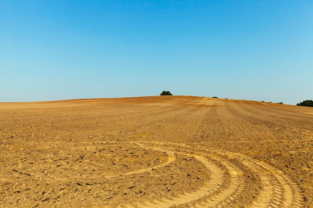 Tracce dal campo agricolo arato a ruota rimanenti dopo l'attrezzatura speciale, il cielo azzurro sullo sfondo