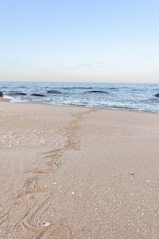 Tracce di serpente nella sabbia. texture di sabbia. sfondo dalla sabbia marrone