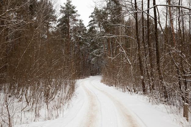 Tracce di neve dalle auto che attraversano una strada rurale nella foresta, un paesaggio invernale