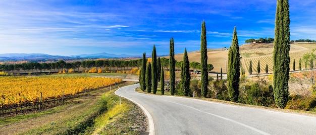 Campagna e paesaggi tradizionali della bellissima toscana. vigneti e cipressi. italia