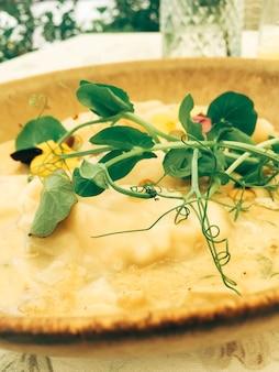 Cucina tradizionale viaggio culinario e gourmet gnocchi fatti in casa in salsa di funghi ricetta polacco p...