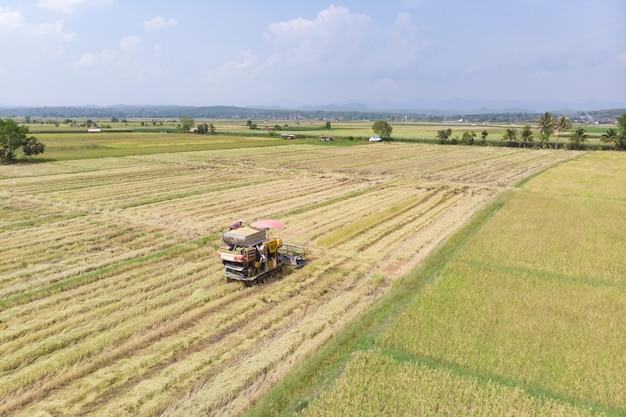 Macchina trattore raccolta tradizionale tailandese