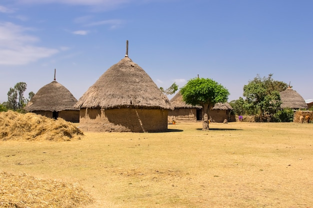 Casa di villaggio tradizionale in etiopia africa etiopia