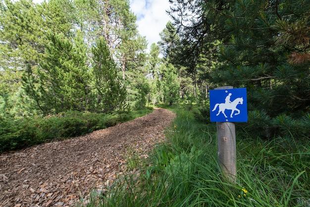 Sentiero per cavalli