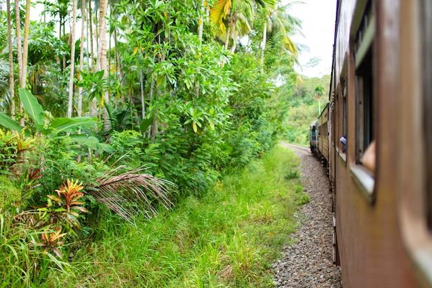 Viaggio in treno in sri lanka. uomo appeso a un carro