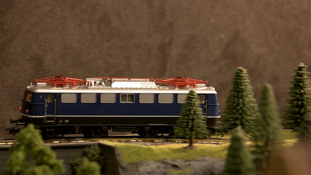 Viaggi in treno attraverso una campagna.