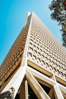 Transamerica tower nel centro di san francisco bella architettura di un edificio commerciale