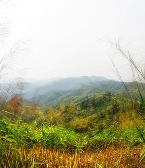 Viaggio nella montagna