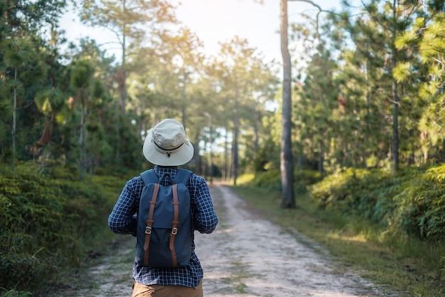 Viaggiatore con un cappello che cammina attraverso la foresta