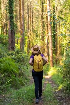 Donna viaggiatrice che indossa un cappello e guarda i pini della foresta