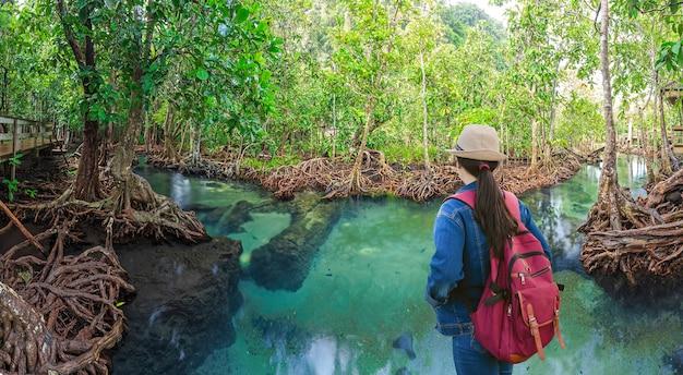 I viaggiatori guardando alberi di mangrovie in una foresta di paludi
