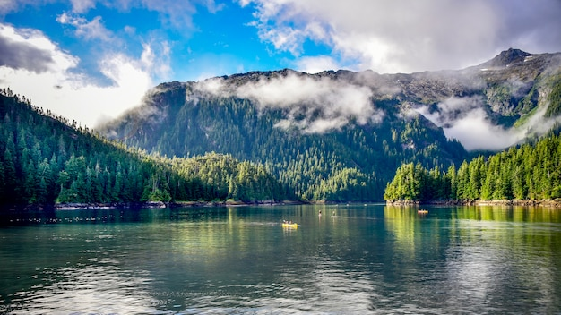 Viaggiando in alaska sfondo con foresta e oceano