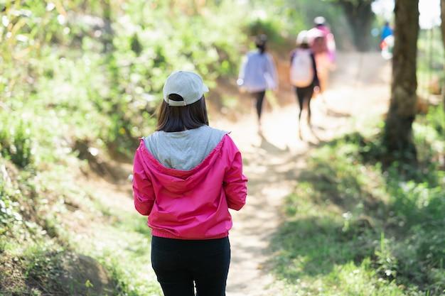 Escursionismo viaggiatore, donne che camminano viaggiano nella foresta