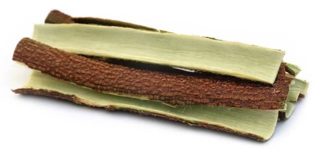 Corteccia di albero di neem medicinale su sfondo bianco