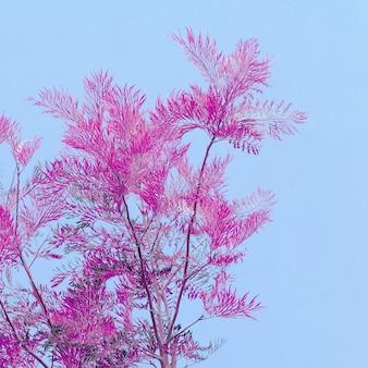 Colori dell'albero arte. minimo. colori alla moda