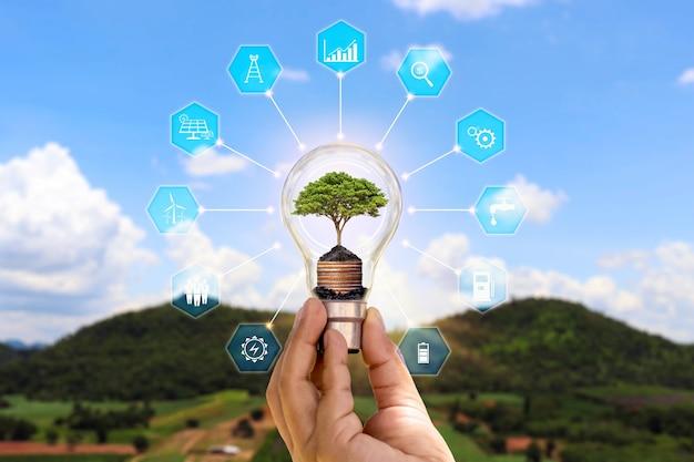 L'albero che cresce nella lampadina a risparmio energetico della mano umana e il concetto di icona di risparmio energetico di risparmio energetico e consumo di energia eco-compatibile.