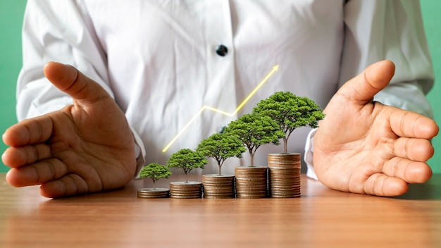 Albero che cresce su pile di denaro e grafico che mostra idee di crescita aziendale
