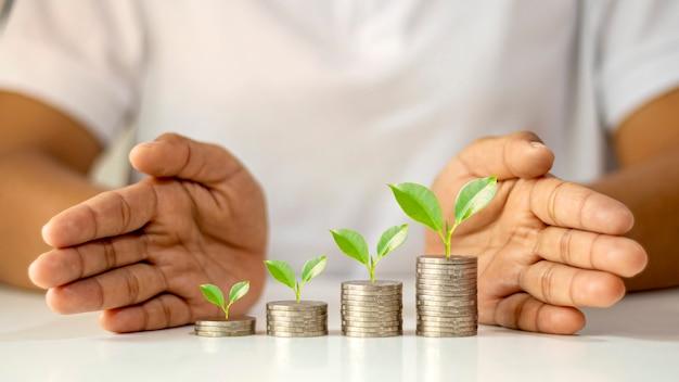 L'albero cresce sul mucchio di monete e gli investitori le proteggono a mano, idee per startup e investimenti.