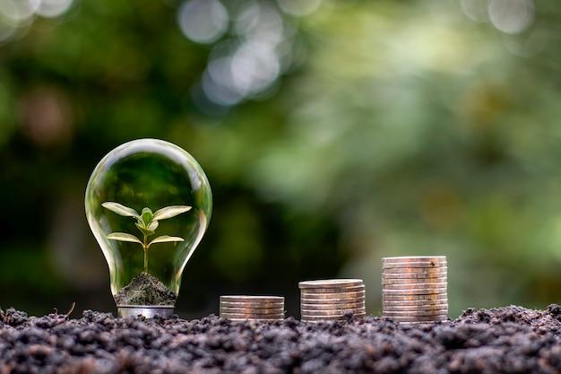 L'albero cresce all'interno di lampadine e pile di monete sul suolo e sullo sfondo sfocato
