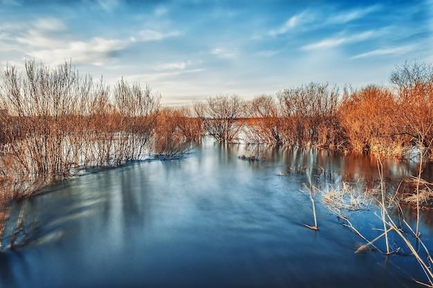 Albero in mezzo al fiume e vedute mistiche