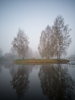 Sagome di alberi in una mattina presto sull'isola nel lago con una copertura di nebbia pesante